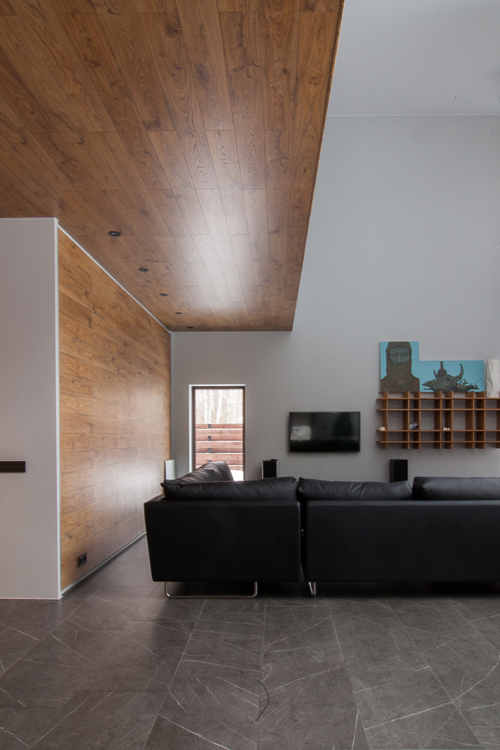 Living room with wooden wall and ceiling